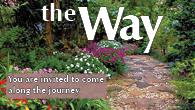 the-way-Spring-2017